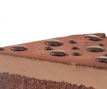 Double Chocolate Bavarois cake